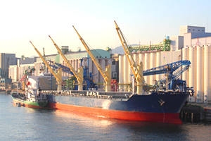 Export clearance and shipment